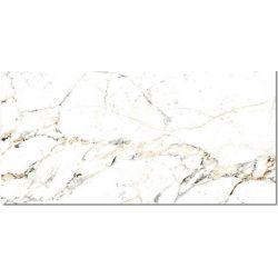 PERONDA Tucci Gold 60x120 P