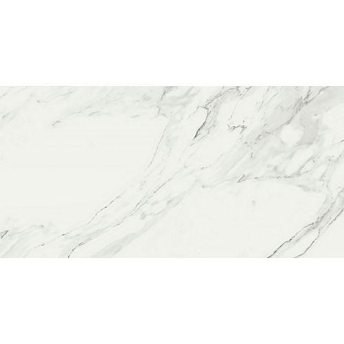 Ragno Symbol Venato Glossy R16F 58x116