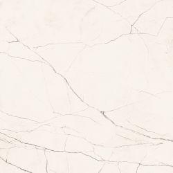 Imola The Room Statuario STA VP6 120x120