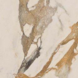 Ariana Epoque Ivory Lappato 60x60