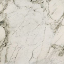 Fioranese Prestige Arabescato Effect Polished 74x74