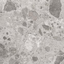 Golden Tile Golden Tile Alpina Wood Grey 19,8x119,8
