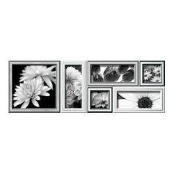 Ibero Black&White Dec. Botanica A S-94 25x75